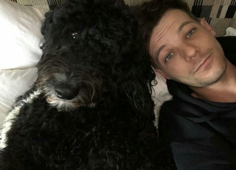 louis' selfie soft - louistbegging | ello