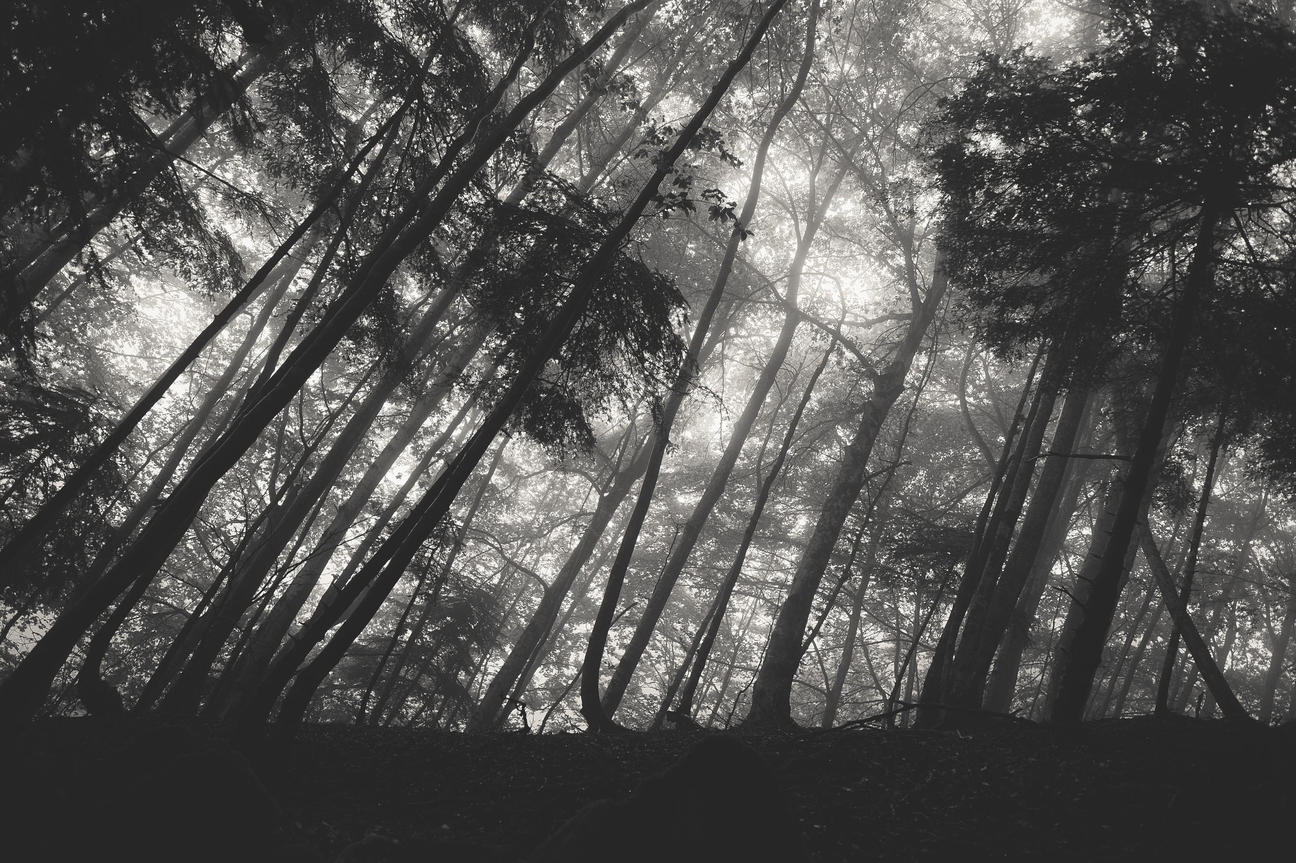 fujifilm, photography, outdoors - yooyye   ello
