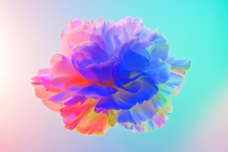 Claire Boscher - Design, artdirection - partfaliaz | ello