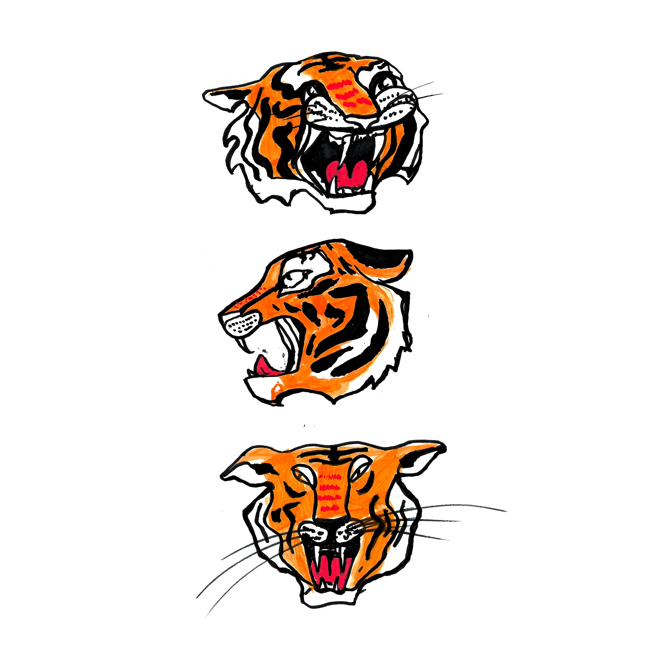 wise tigers - progress follow - mbrasnovic   ello