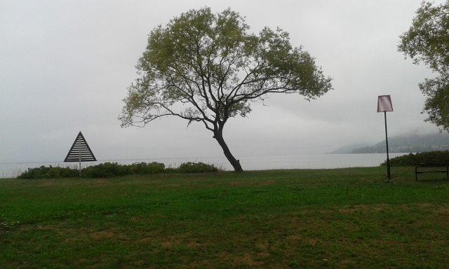 Kind misty 2day ... 1 South Wät - mellyrn | ello