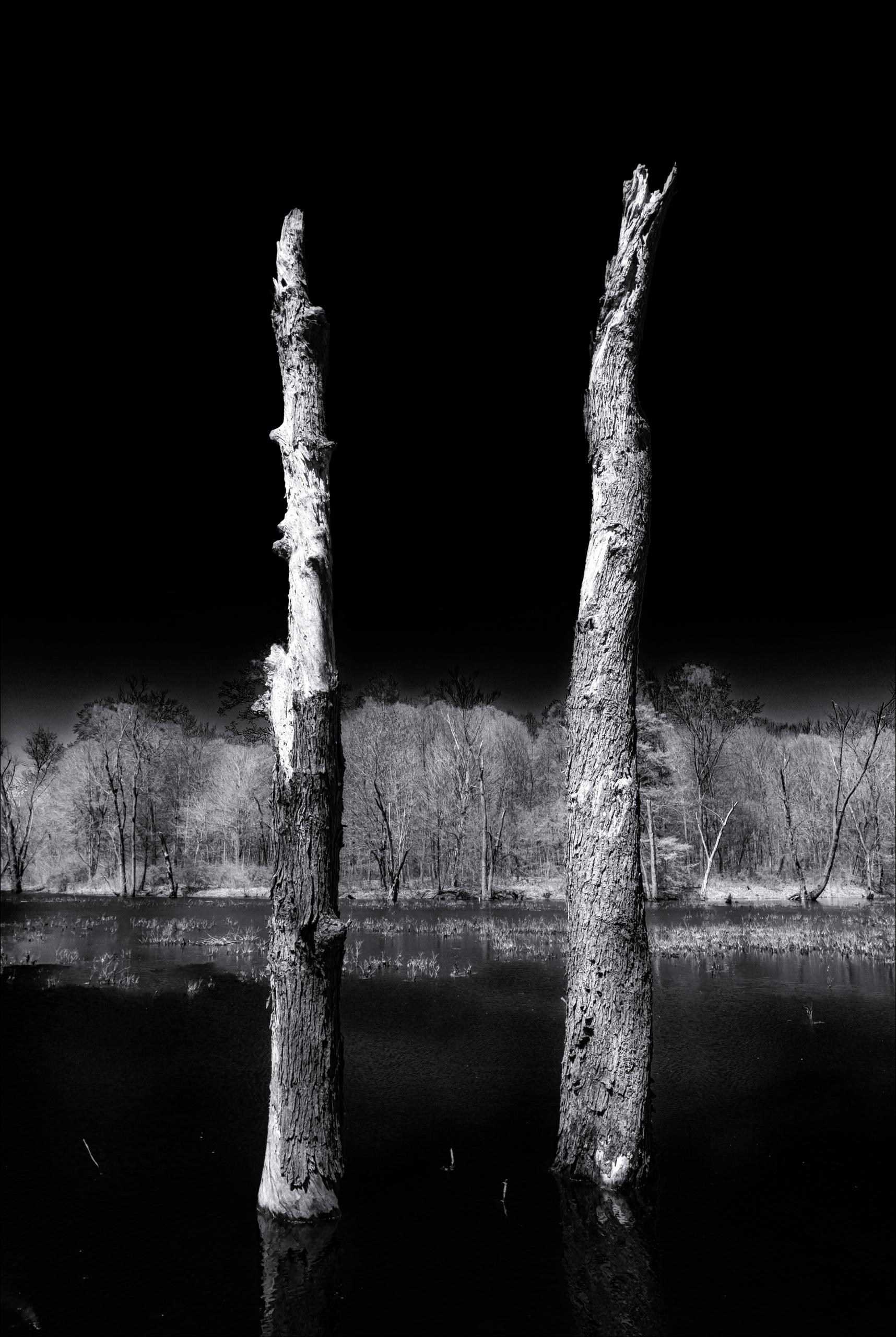 standing  - monochrome, blackandwhite - docdenny | ello