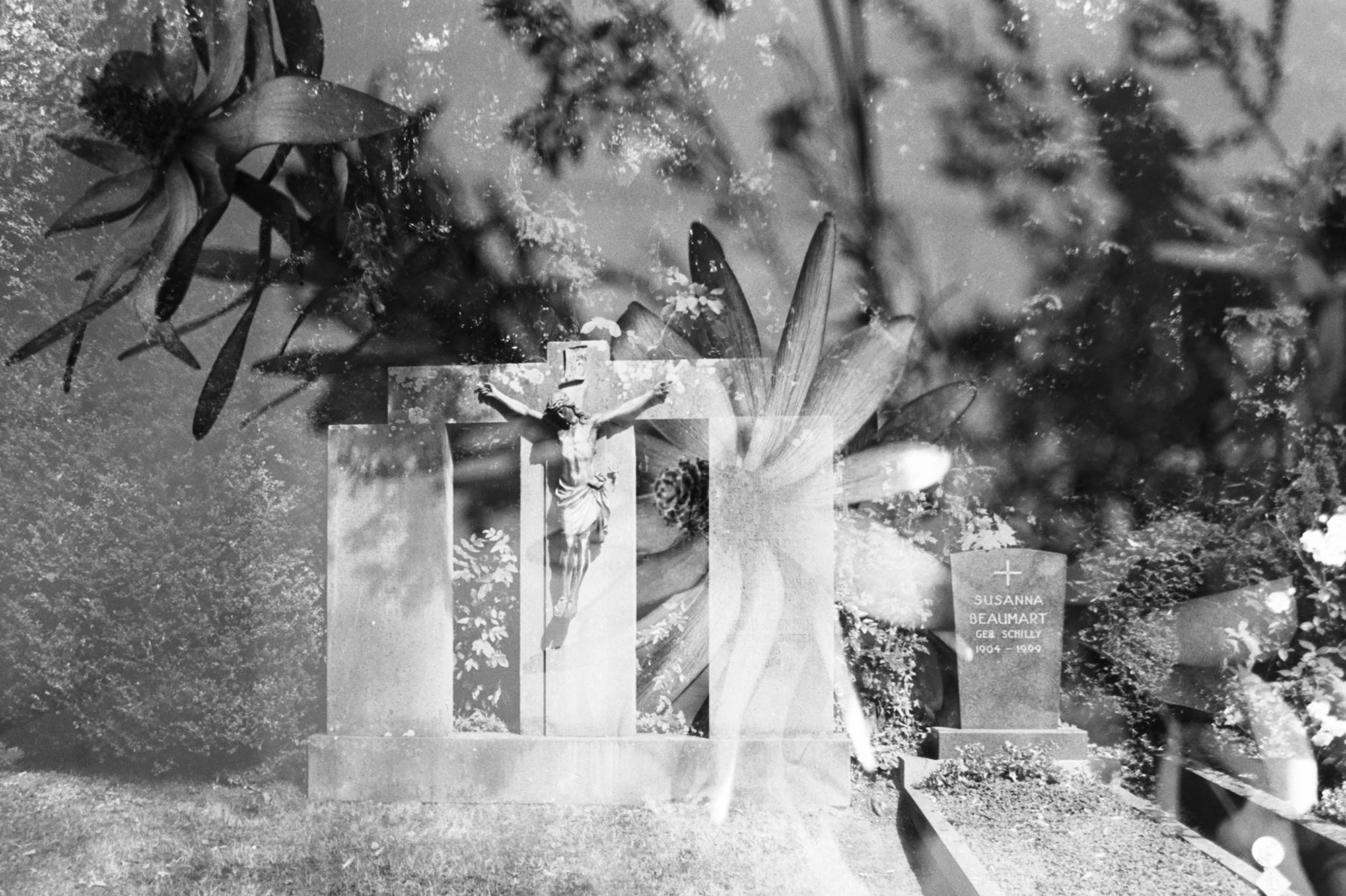 Film Collaboration: Walter: Ger - baxtus   ello